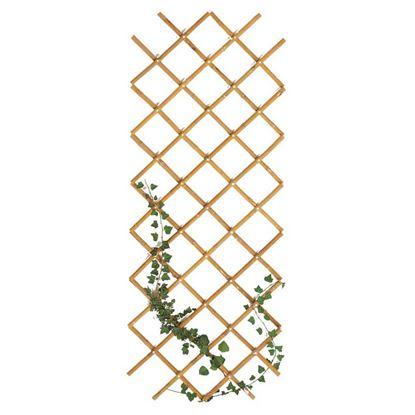 Immagine di Traliccio in bamboo, estensibile, colore naturale, canna Ø 20/22 mm, 60x240 cm