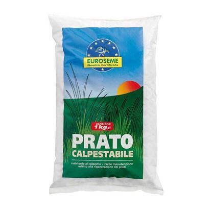 Immagine di Semi per prato, Euroseme calpestabile, ideale per la formazione di tappeti erbosi resistenti al calpestio, 1 kg
