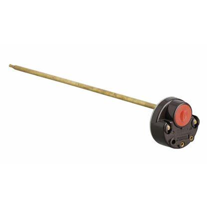 Immagine di Termostato, resistenza scaldabagno, 30 cm