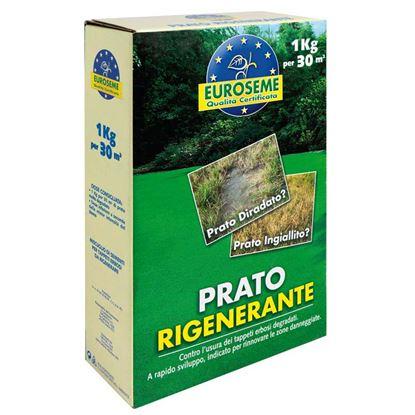 Immagine di Semi per prato, Euroseme rigenerante, ideale per le zone di prato danneggiate da infestanti, 1 kg