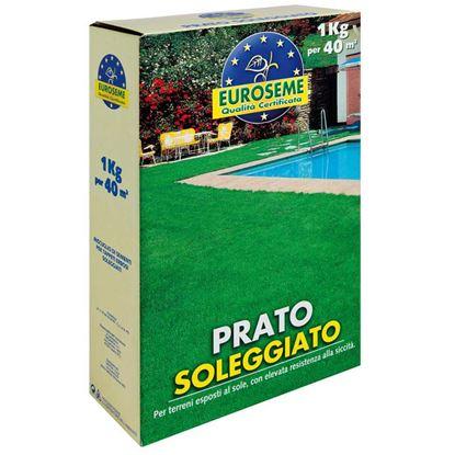 Immagine di Semi per prato, Euroseme soleggiato, miscuglio adatto per la formazione di tappeti erbosi esposti al sole, 1 kg